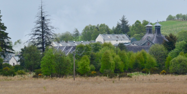 Glentauchers Distillery 1